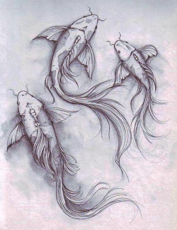 Koi fish by dennis adriano at for Coy fish drawing