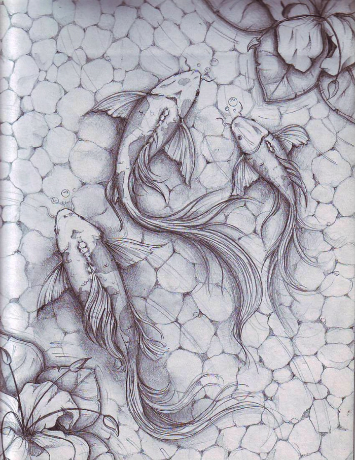 Koi fish by dennis adriano at for Koi fish pond drawing