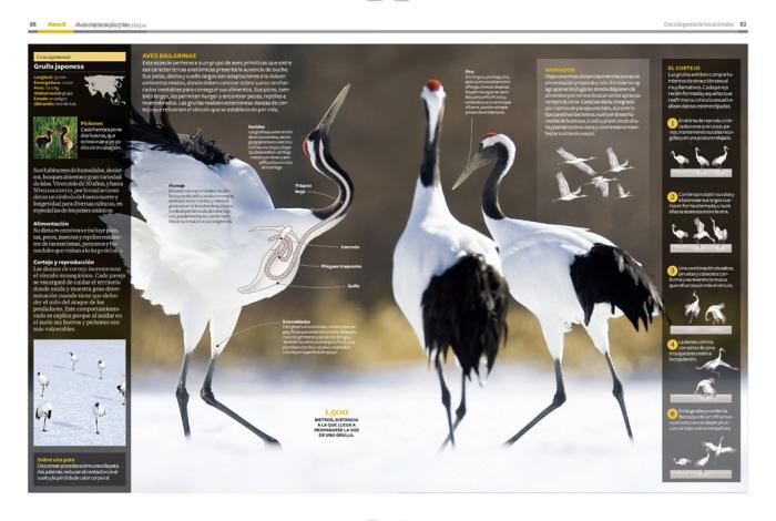 National Geographic Enciclopedia de los Animales. Diario