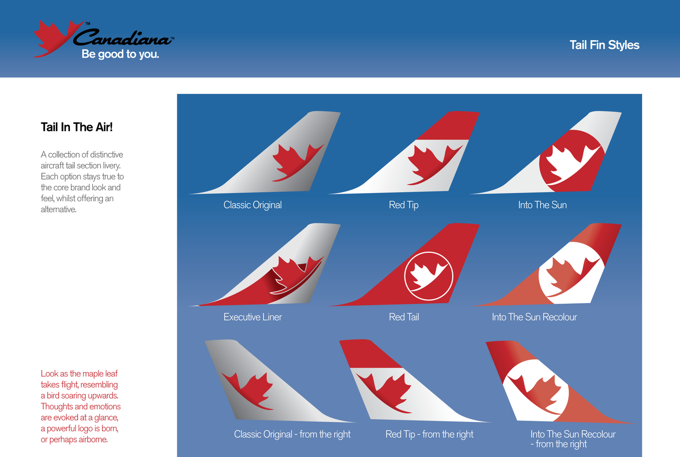 airline livery by col blackwood at coroflotcom