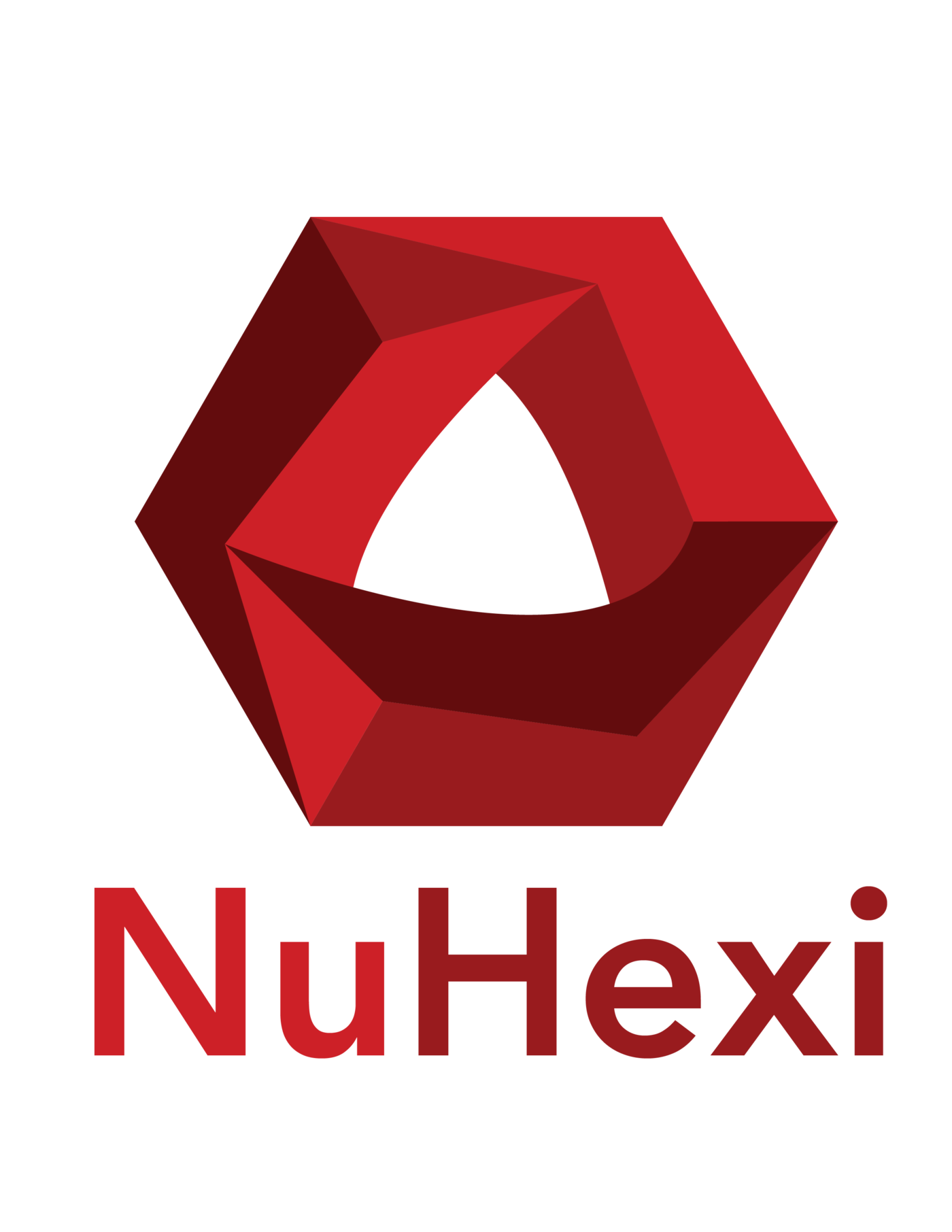 Projects by ricky marton at coroflot logo for a new marketing company called nuhexi logo variations will have different colors to represent different ares of the company biocorpaavc Image collections