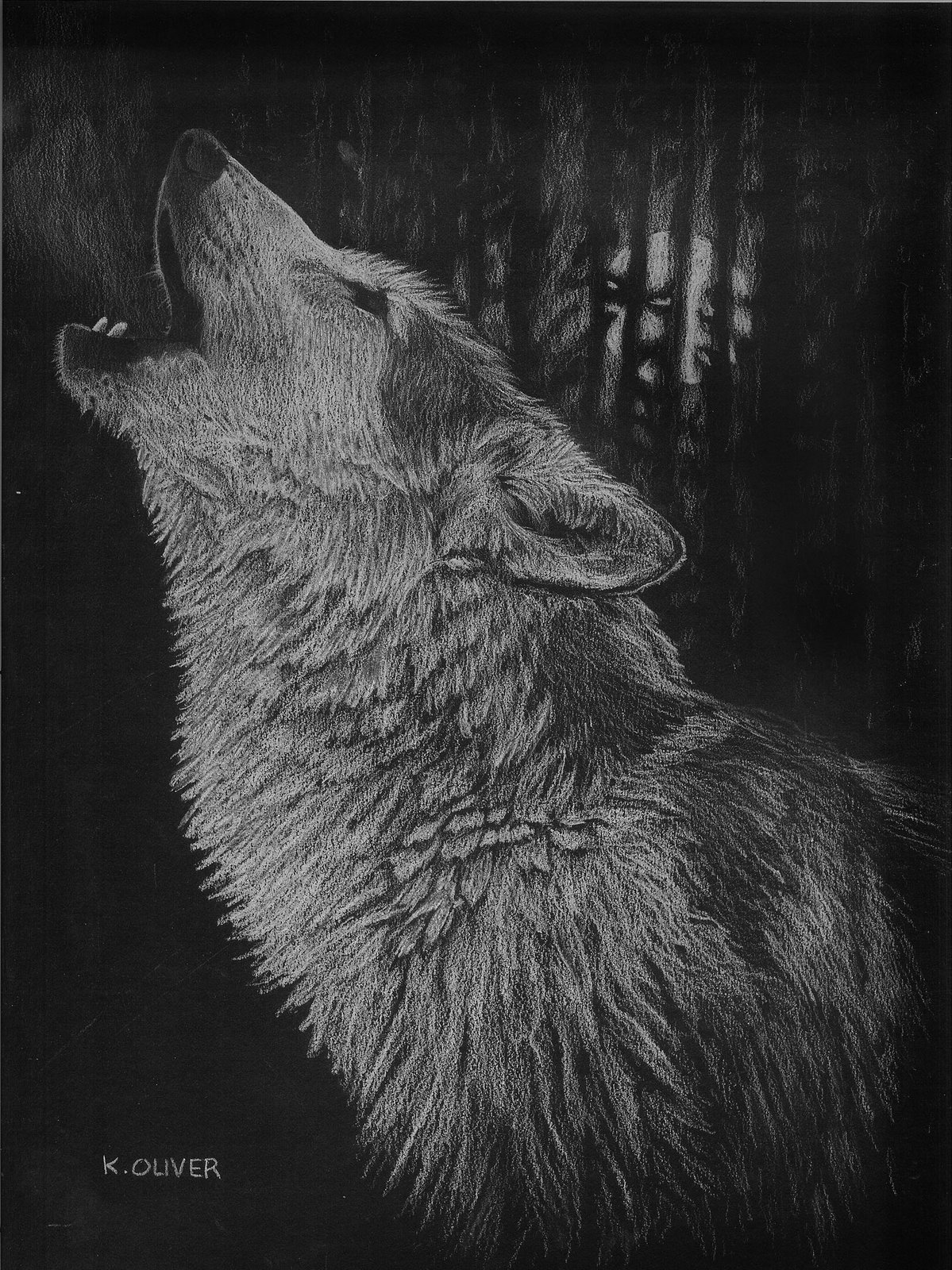 Black Wolf Howling Drawing Wolf Howling Bl...