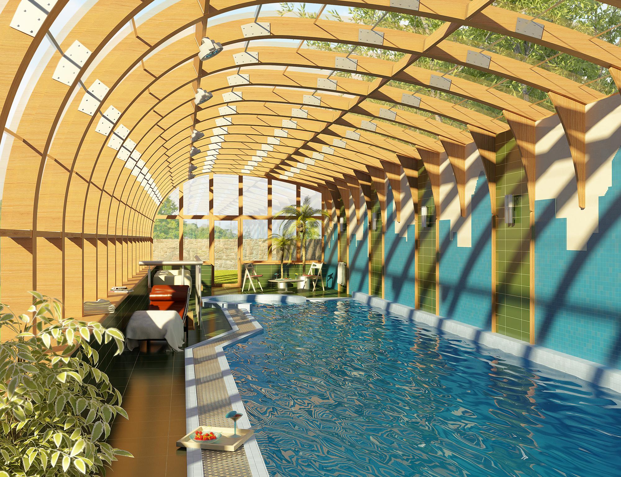 Swimming pool 3d max for Pool design reactor