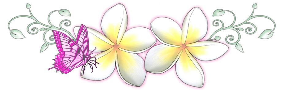 how to draw a frangipani flower