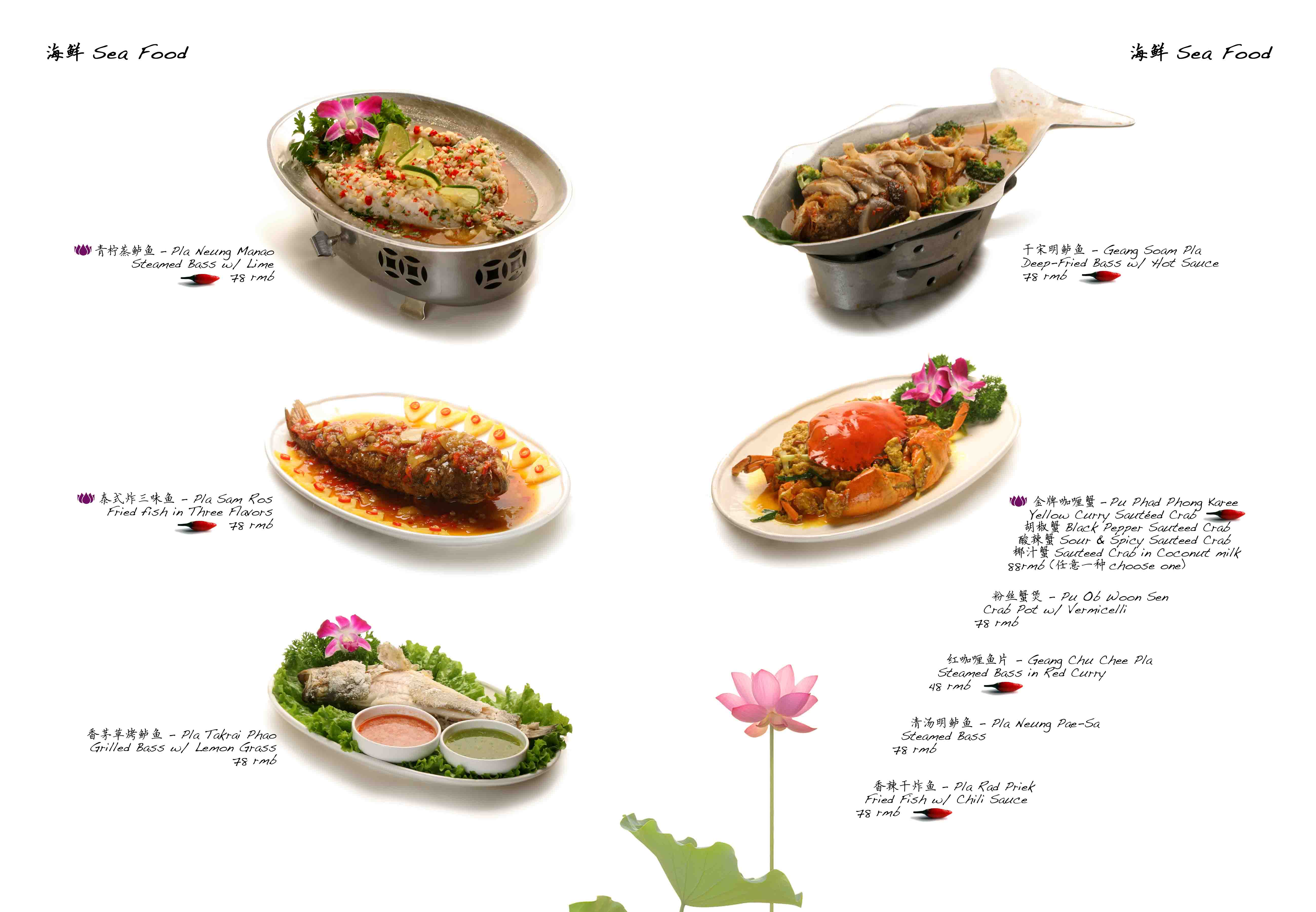 Thai restaurant menu design for About thai cuisine