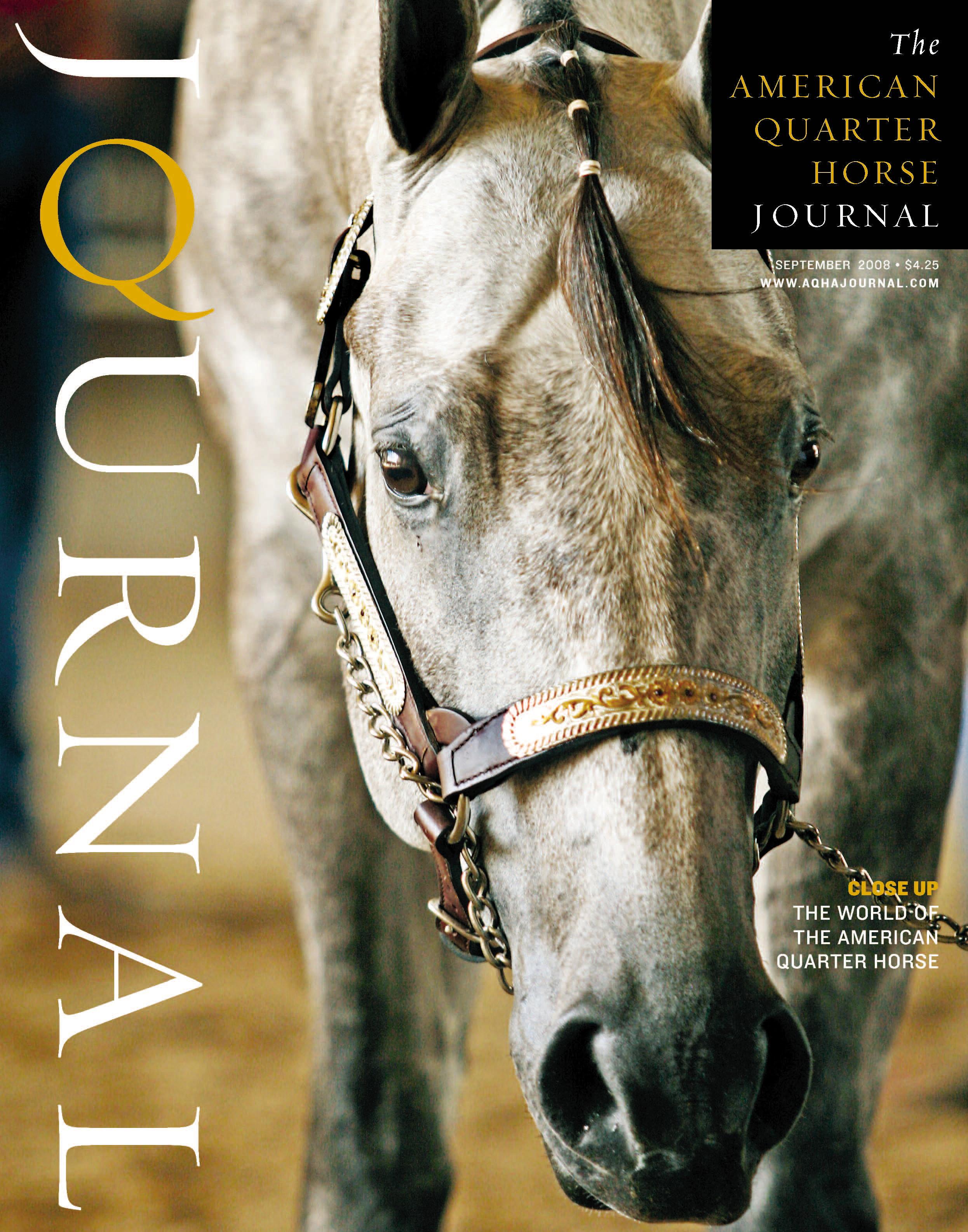 Quarter Horse Journal Magazine Quarter Horse Journal World