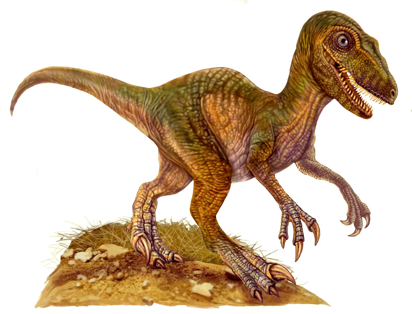 Encuentran Huellas De Dinosaurio En Uruguay