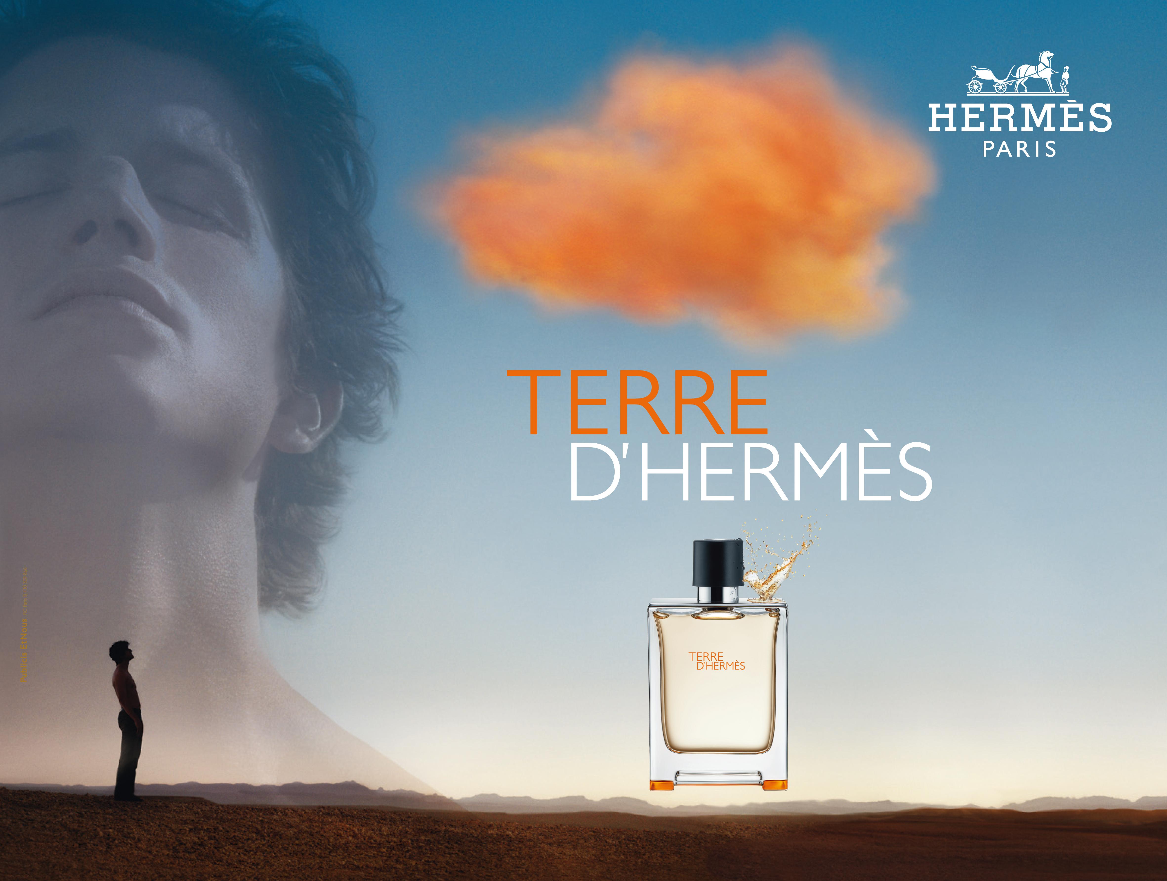 hermes perfume terre d hermes by nicolas dumont at. Black Bedroom Furniture Sets. Home Design Ideas