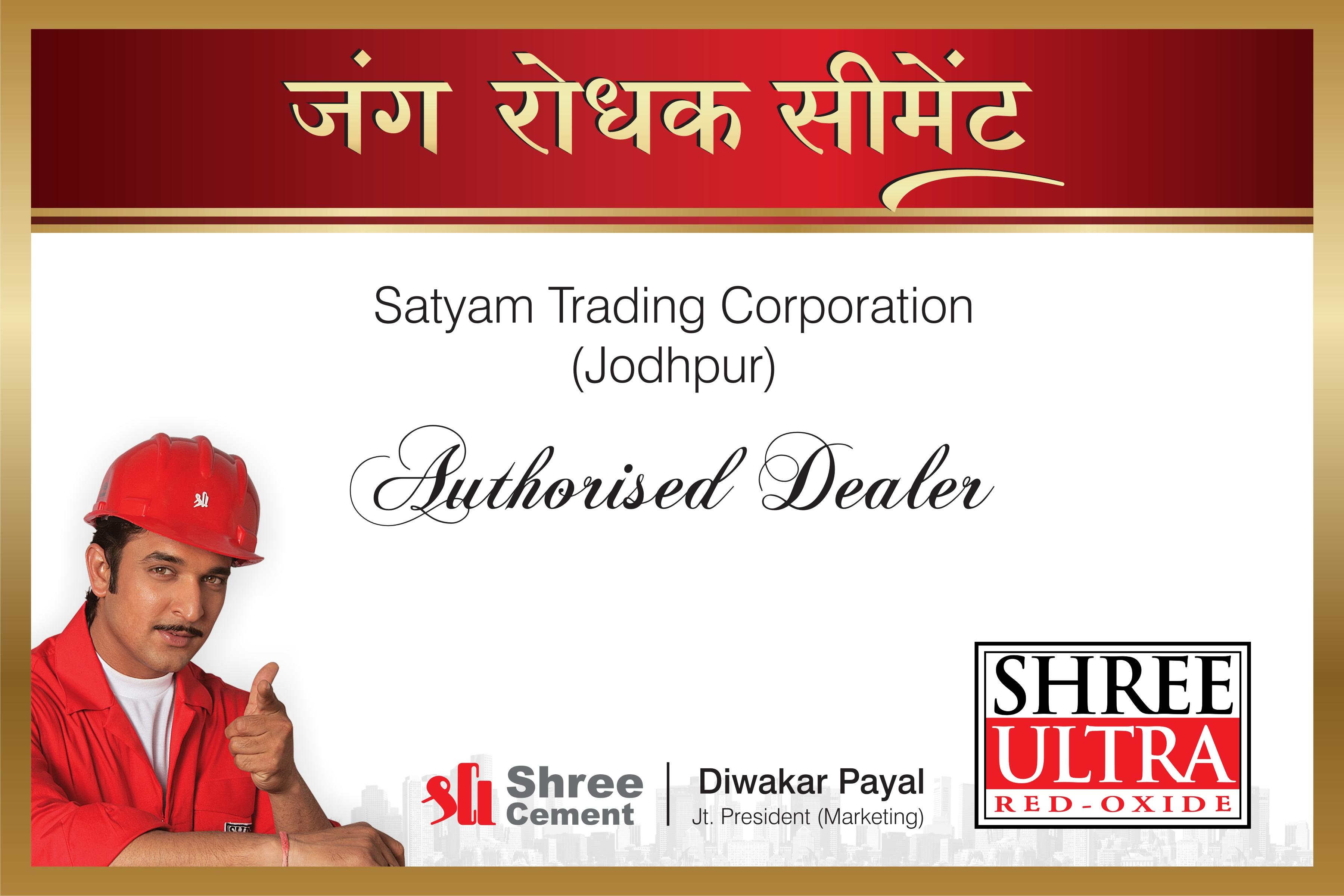 Shree Ultra Cement : Hanmer msl work portfolio by harsh shankar at coroflot