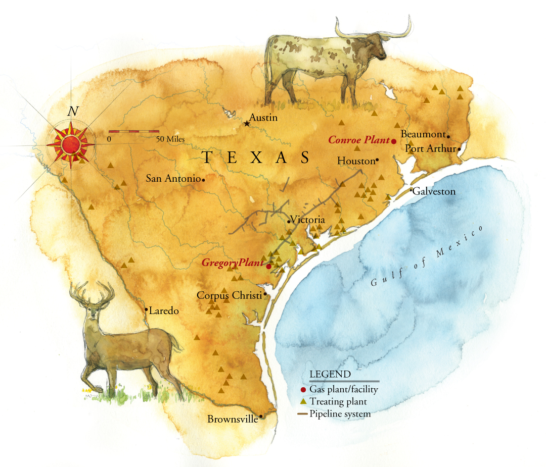 Watercolor Maps By Steven Stankiewicz At Coroflotcom - Map of southern texas