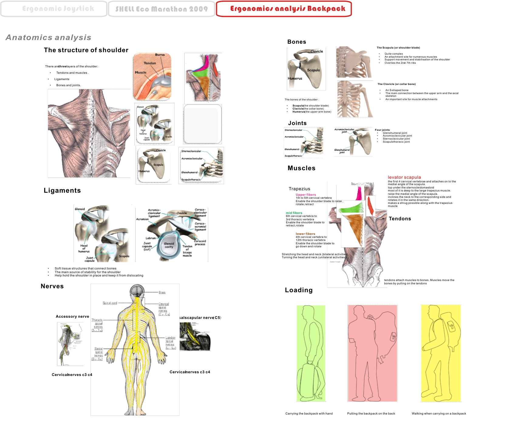 ergonomic analysis Ergonomic analysis provides visual body maps and user defined check lists to highlight and quantify safety and quality related issues.