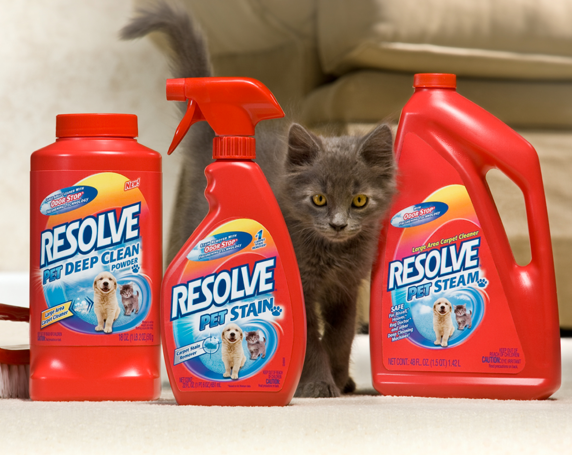 resolve carpet cleaner new line extension for pet sn and odor remover walmart resolve carpet
