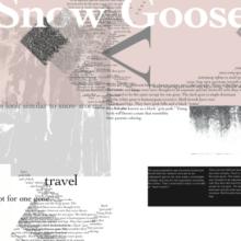 Snow Goose 2 Files