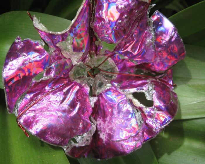 cd flowers by Aditi Goenka at Coroflot com