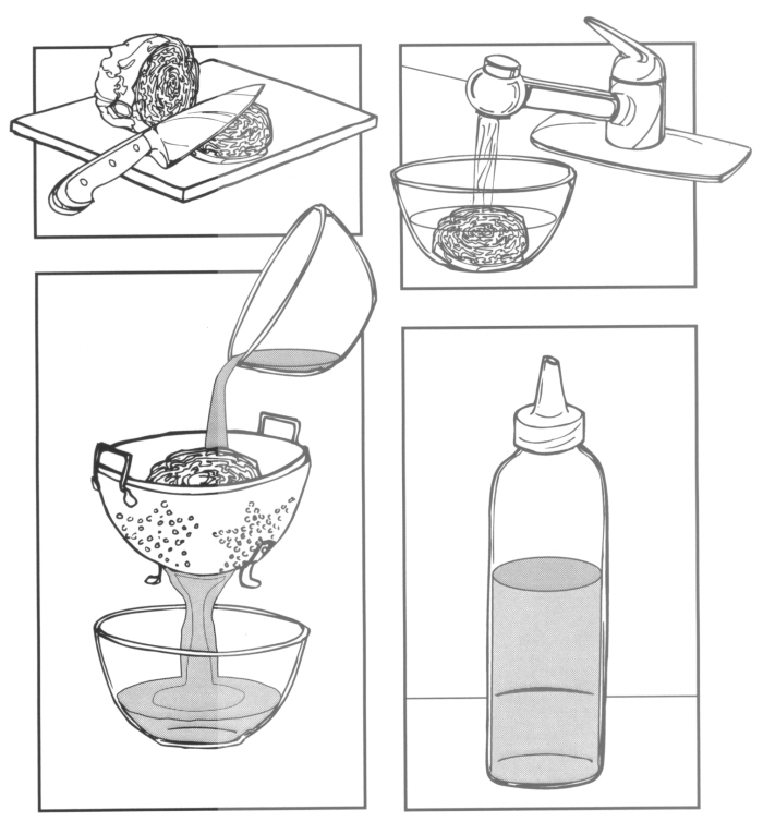 Science Instruction Manual Illustrations By Patricia Thornton At