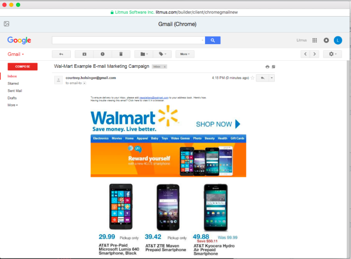 Wal-Mart Sample E-mail Newsletter Campaign by Courtney