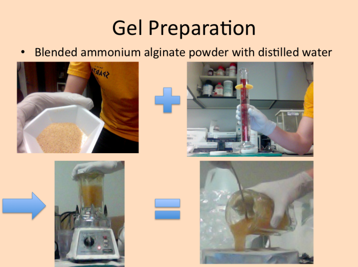 Biodegradable, Ice-Templated Alginate Aerogels for Wind