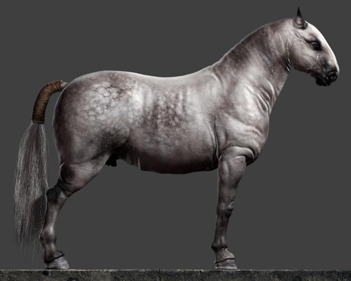 Horse 3d Model By Petar Velichkov At Coroflot Com