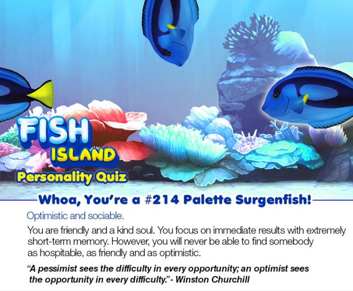 Fish Island Sea Personality Quiz By Kimberly Kan At Coroflot Com