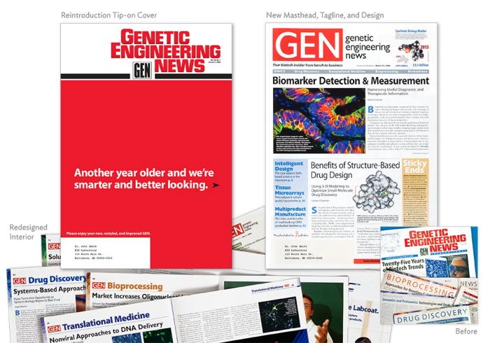 . Rebranding of Genetic Engineering News Magazine   Media Kit by Julia