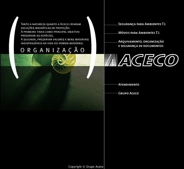 f9b3443f96ac5 Aceco Securtity for Enviroment IT - Maintenance ACECO - Project manager.  Web Vox team - 2000