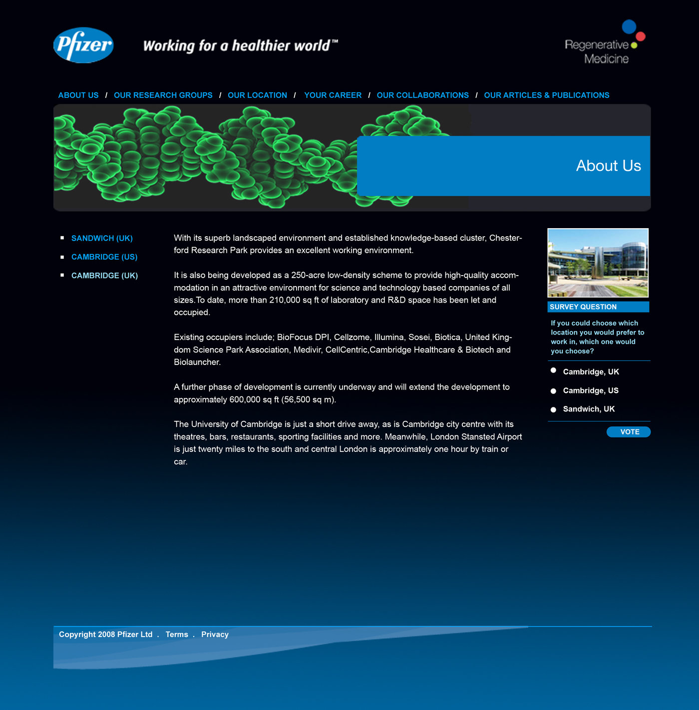 Pfizer Website by Gavin Ward at Coroflot com