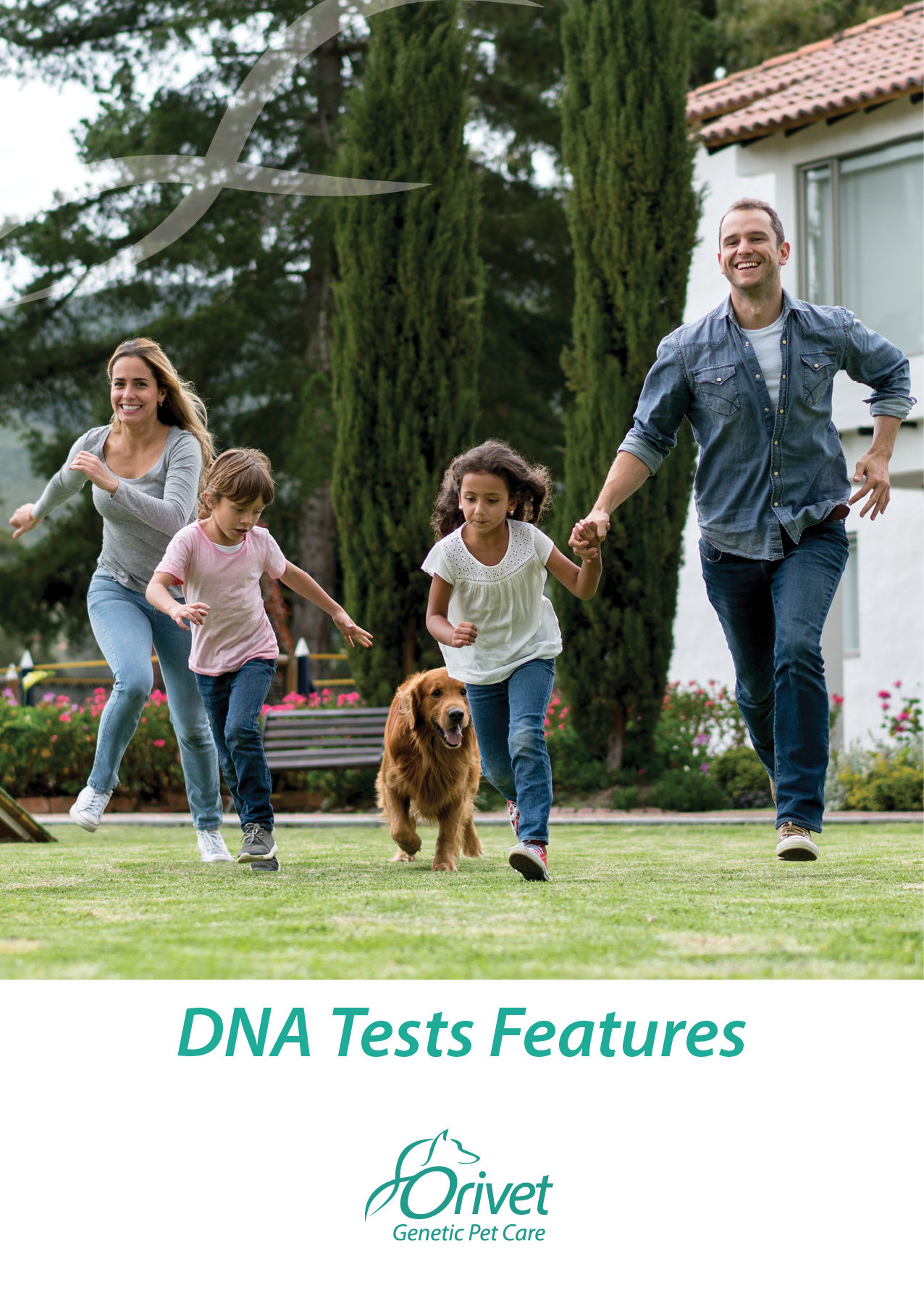 PDF design - DNA Tests Features by Igor 'Nester' Nesterenko at