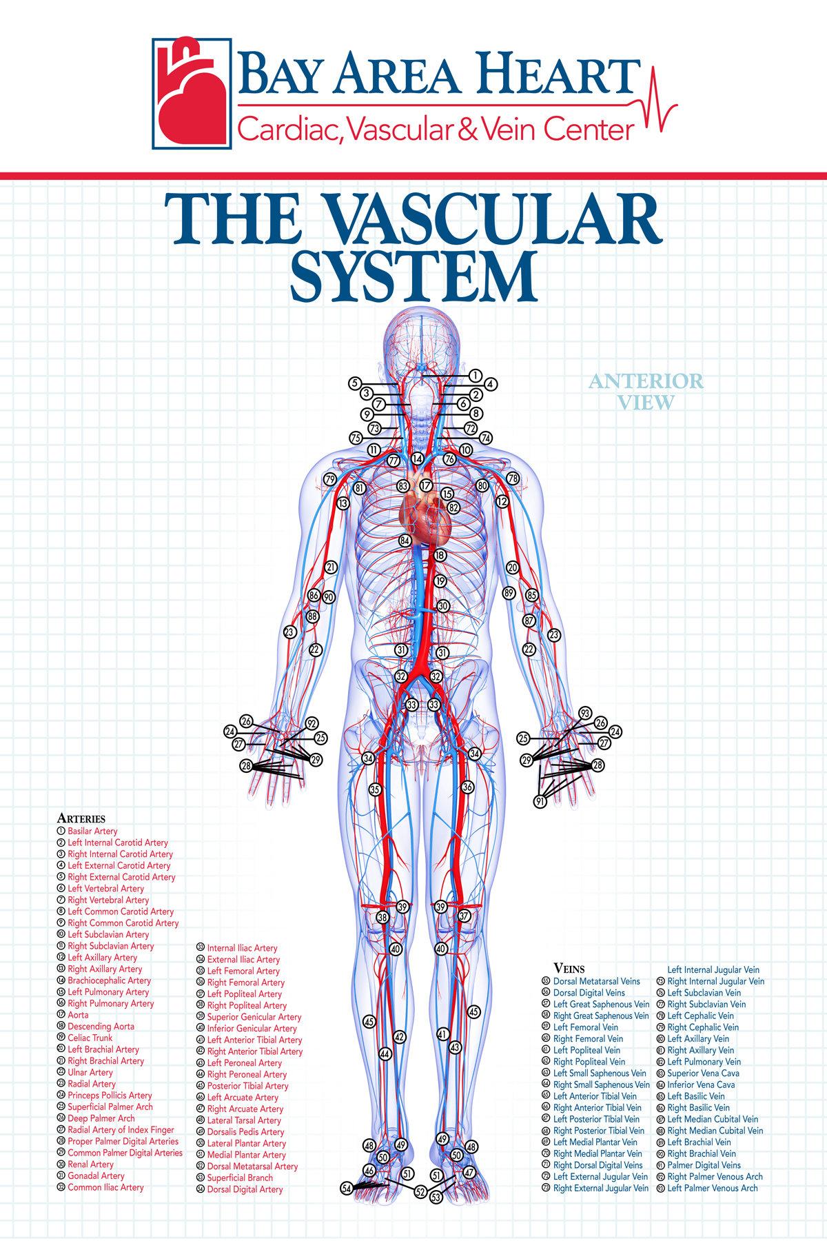 Branded Medical Patient Rooms Poster Series by Jennifer Bernthal ...
