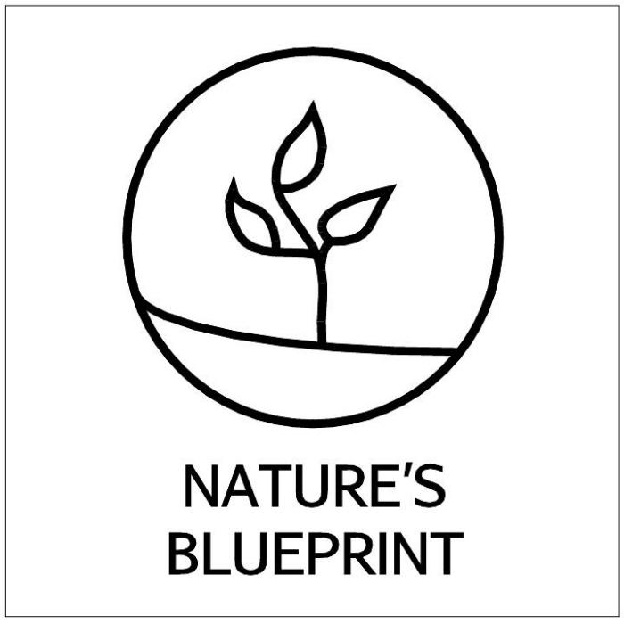 Natures Blueprint By Sean Kelley At Coroflot Com
