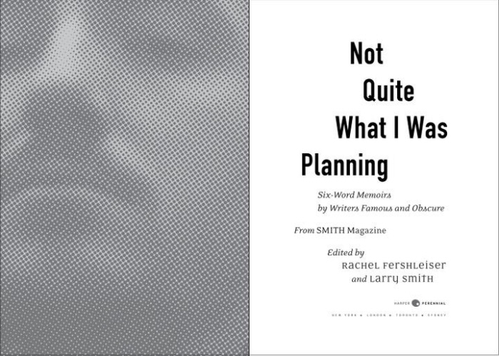 Not Quite What I Was Planning Book Interior Design By Justin Dodd