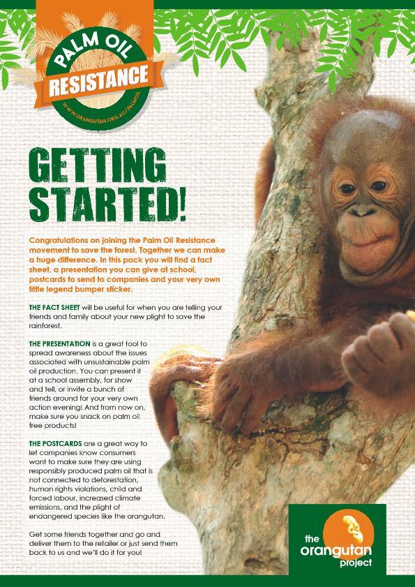 The Orangutaun Project by Renée Stevens at Coroflot com