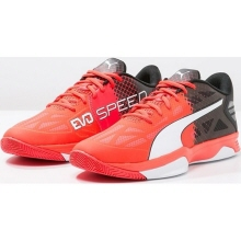 puma indoor evospeed 1.5